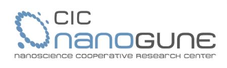 Nanogune