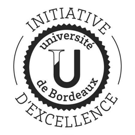 Initiative D'Excellence